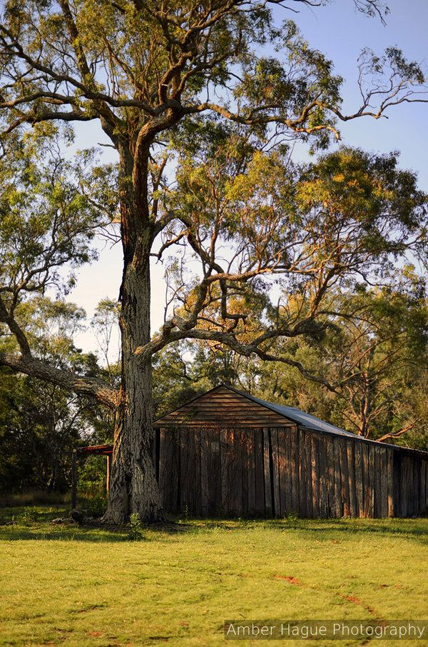 Rural Shed at Cattai National Park, NSW Australia.