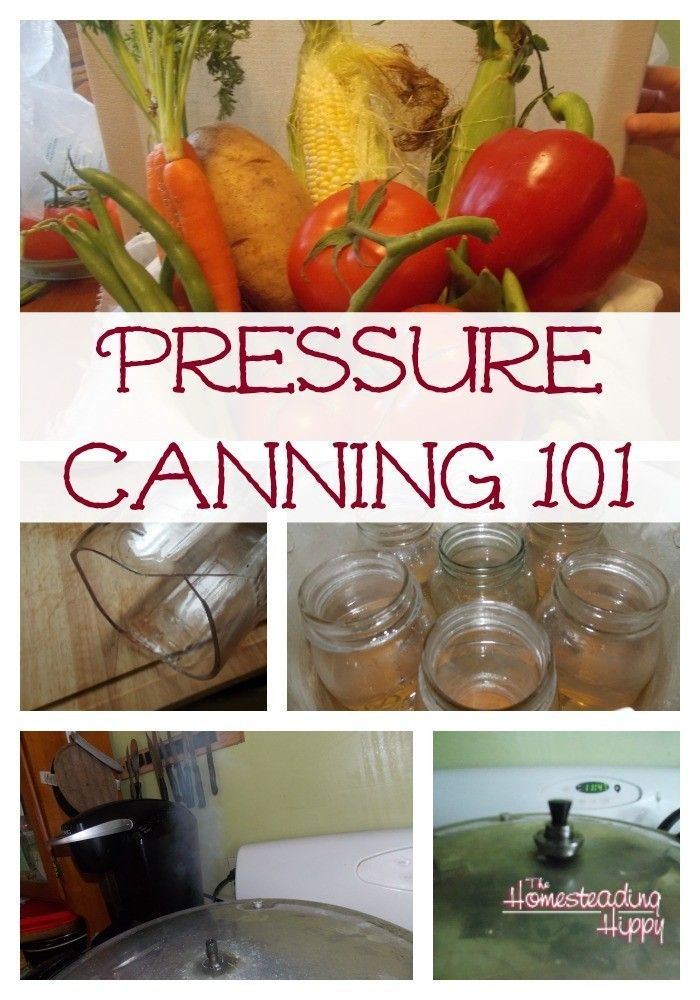 Want to learn how to pressure can those low acid veggies?  No more fear-you can do this! The Homesteading Hippy