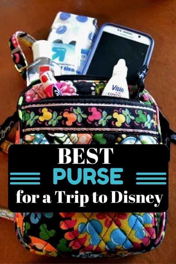 Wondering what type of purse you should bring to Disney? Here is one idea!