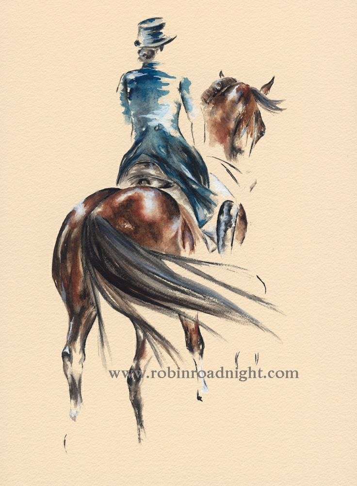 Best 25 dressage horses ideas on pinterest dressage for Art minimal facebook