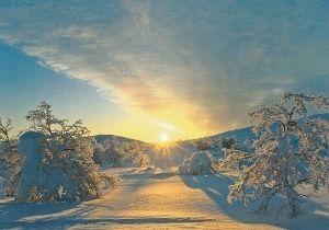 Auringon kultaamat hanget