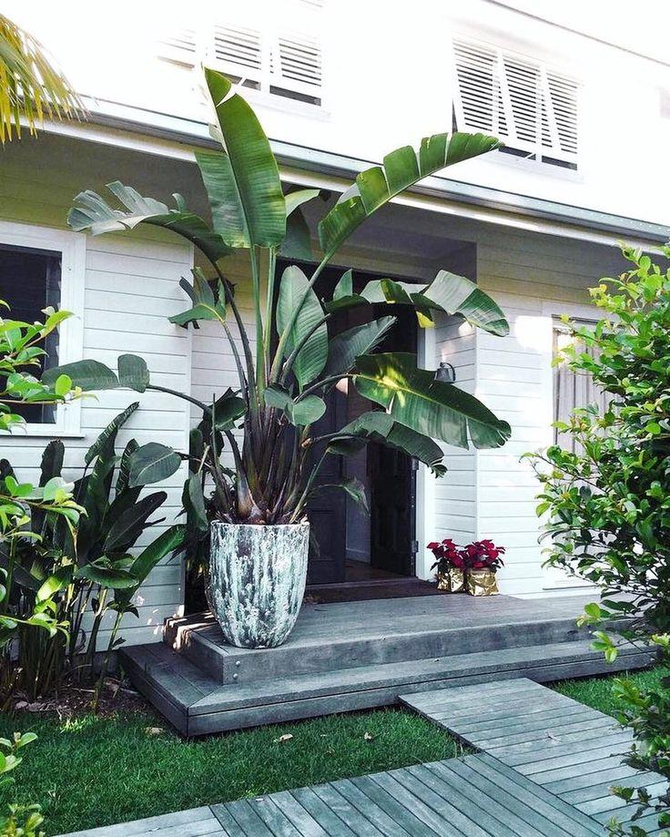 Garden inspo very you the pot warehouse garden love for Beach house landscaping plants