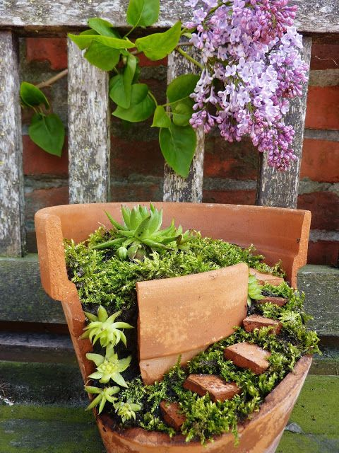 28 best Terracotta Fairy Gardens images on Pinterest   Fairies ...