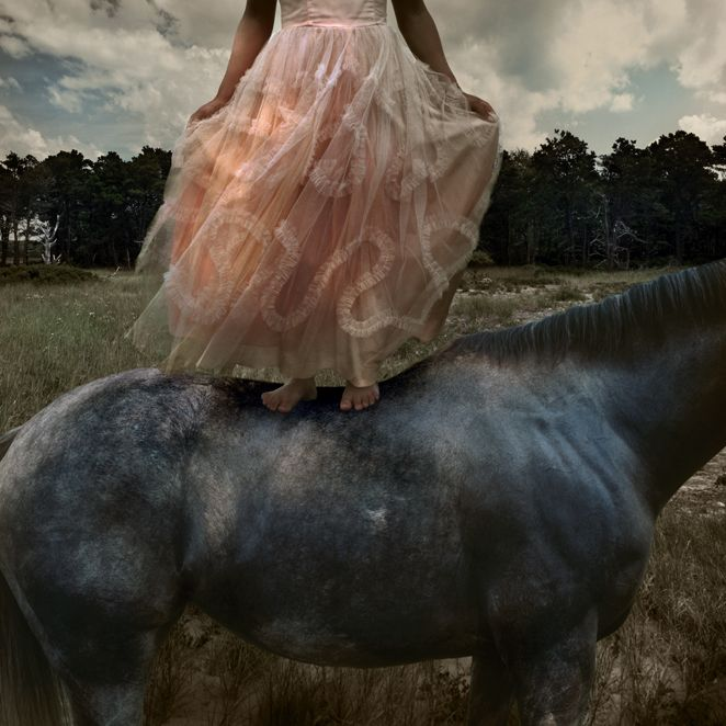 Tom Chambers: Prom Gown 2