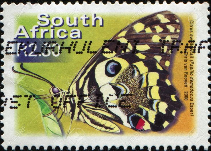 South African postage stamp - 2000