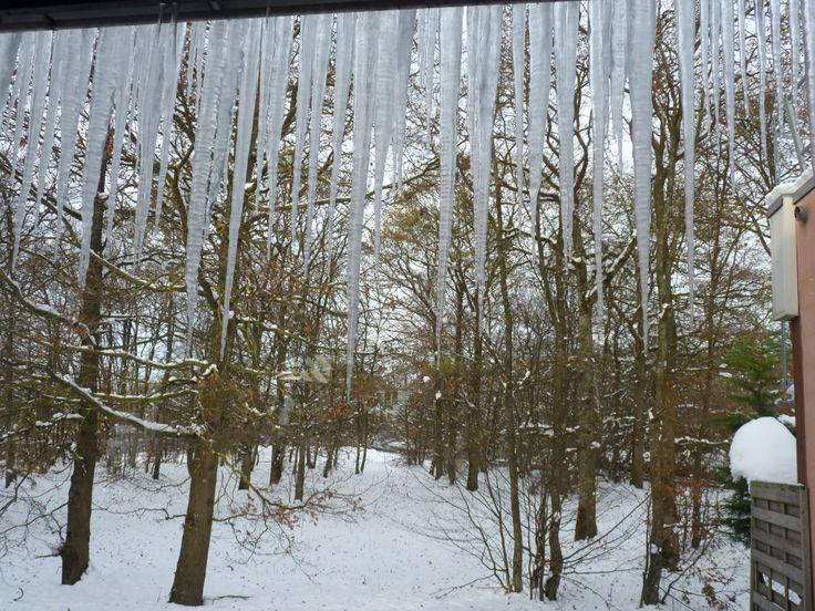 El invierno y sus caprichos