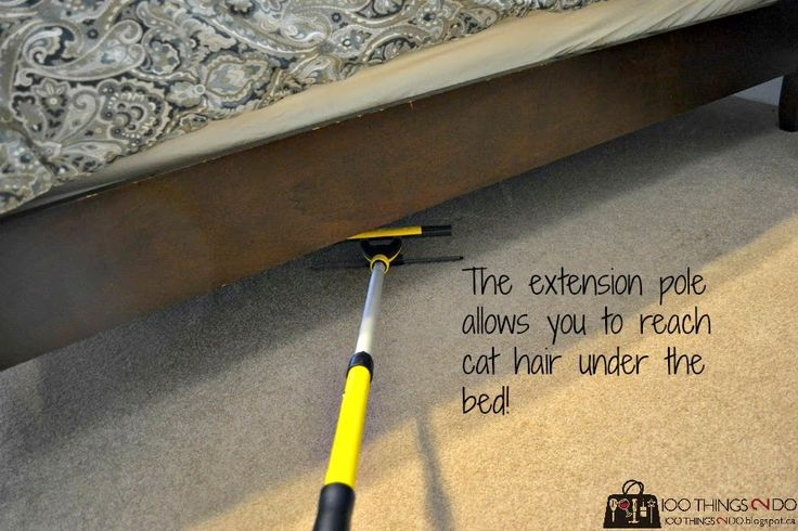 How to remove pet hair from carpet (part 2). #enjo