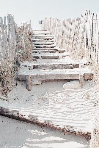 Sandy Beach Days