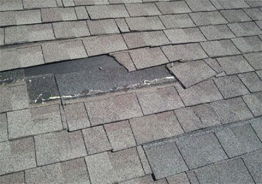 23 Best Professional Roofing Services Images On Pinterest