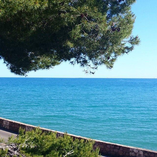 Inicio de la #Viaverde en dirección #Oropesa. #Mar #azul #turquesa #precioso. #cielo #nitido #verde #arbol #sol #Benicassim #Benicassimparaiso #Benifornia #paisaje #instabeni #instasea #lovely