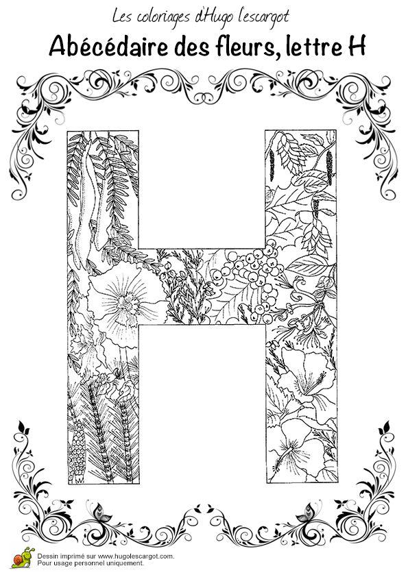 Coloriage Alphabet Fleur.Coloriage Alphabet Fleurs H Sur Hugolescargot Com Auto Electrical