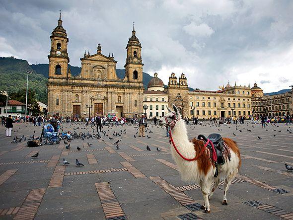 Bogotá's Bohemian Renaissance