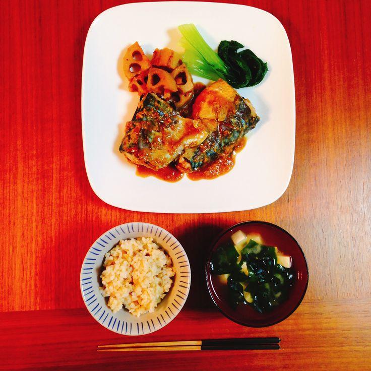 Mackerel simmered in Miso with lotus root 鯖と蓮根の味噌煮