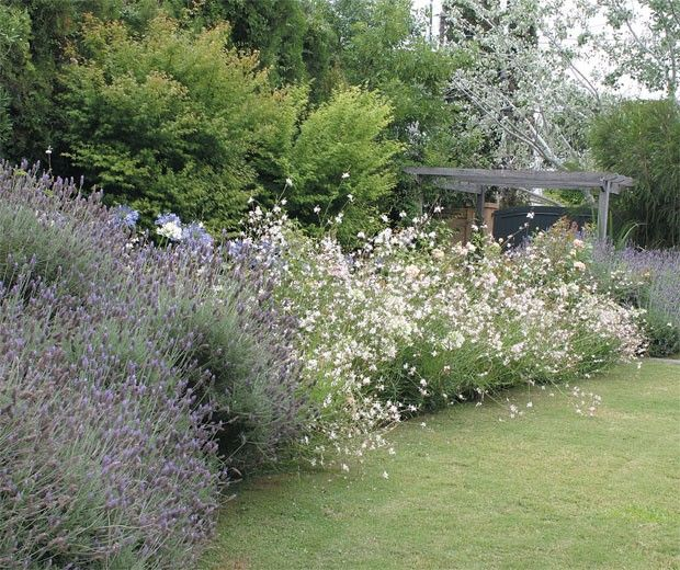m s de 25 ideas incre bles sobre paisajismo jardines en