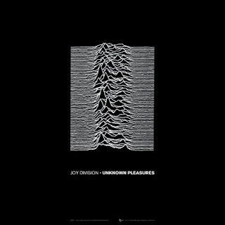 Joy Division - Unknown Pleasures (1979) Album ispunjen najiskrenijom emocijom, zaostavština kratkog života Iana Curtisa, koji se, posle manje od godinu dana od izdavanja ovog albuma, ubio u svom stanu.