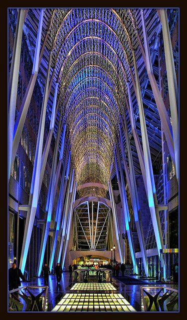 My favourite lobby in Toronto's financial district, especially when it looks like this at Christmas time. Note: designed by Calatrava.