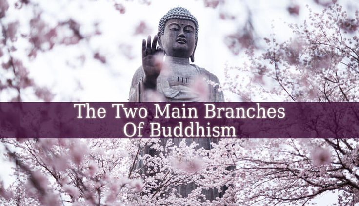 These Two Main Branches Of Buddhism might seem different, but their core beliefs are similar. They both believe in Buddha, his teachings and achievements.