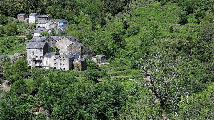 Celle and Pitricaggio villages - Castagniccia - Haute Corse - France