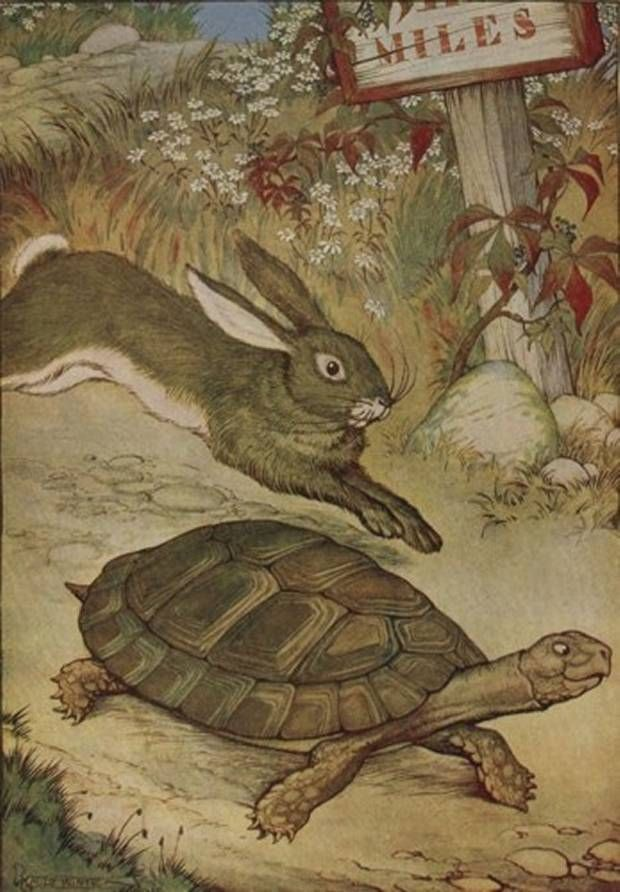 Aesop's Fables - The Hare And The Tortoise By Milo Winter