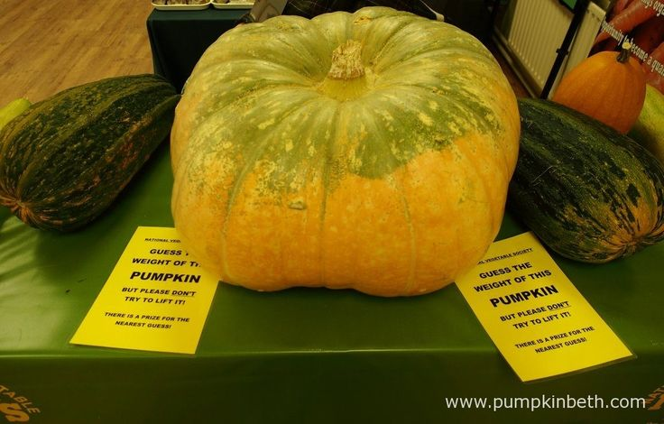 The National Vegetable Society are running a fun competition - Guess the Weight of the Pumpkin! It's just 50p to enter the competition - where you can make your best guess in either Imperial or metric measures. There are both Childrens' and Adult categories in this fun competition. Visit the National Vegetable Society's stand, inside the Hillside Events Centre, at Taste of Autumn, at RHS Garden Wisley, for more information and to enter this lovely competition.