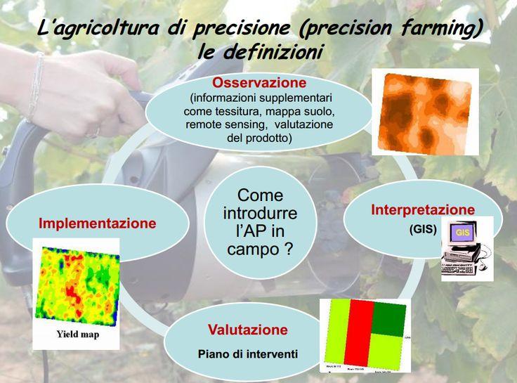 L'agricoltura di precisione (AP) viene  descritta come un processo ciclico di  osservazione/acquisizione di dati, seguita  da un'interpretazione e da una  valutazione delle informazioni acquisite,  e quindi l'implementazione di un set di  decisioni/gestione rispondenti ad essi,  eseguite attraverso prime osservazioni  ect.,