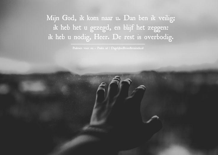 Mijn God, ik kom naar u. Dan ben ik veilig; ik heb het u gezegd, en blijf het zeggen: ik heb u nodig, Heer. De rest is overbodig. Psalmen voor nu – Psalm 16 #God, #Heer