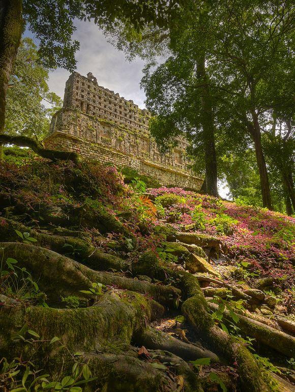 Mayan ruins of Yaxchilan . Chiapas, Mexico