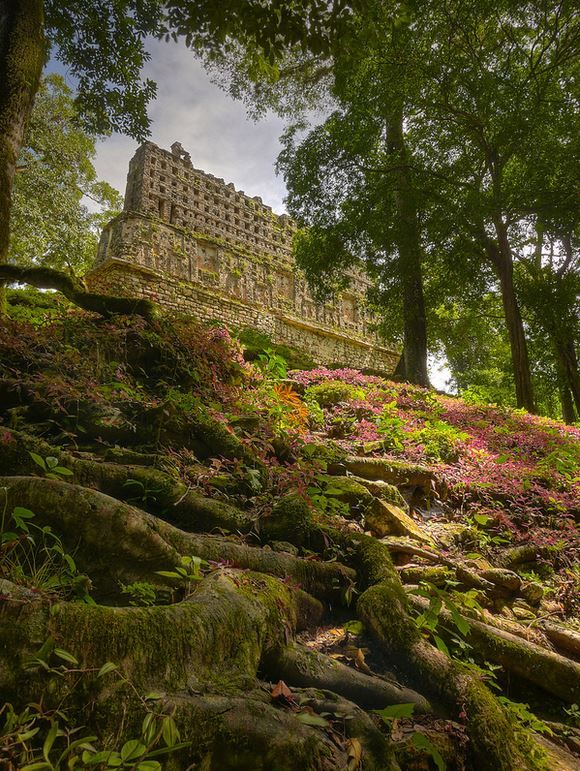 Hidden in the jungle - the Mayan ruins of Yaxchilan - Chiapas, Mexico  (by Andy Weiss)
