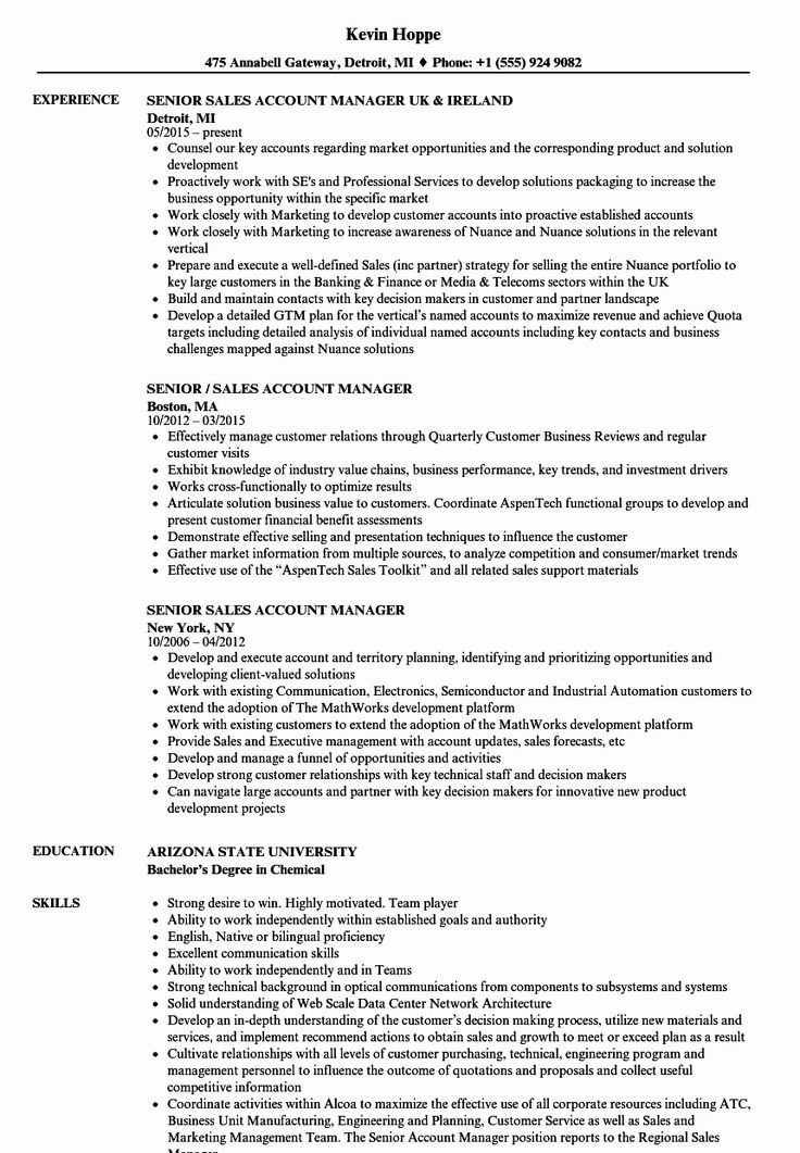 23 Account Manager Resume Examples in 2020 Resume