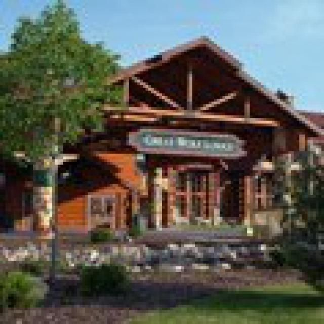 Family Friendly Resorts and Hotels in the Southeast US: Great Wolf Lodge - Concord and Williamsburg