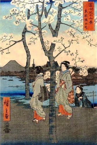 Cherry Tree - Hiroshige: Japanese Art, Cherry Trees, Cherries, Woodblock Print, Asian Art, Will Divide Hiroshige, Cherry Blossoms