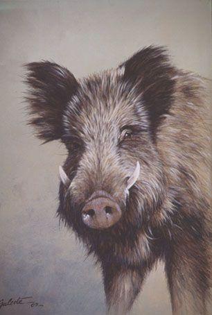 Wild Boar #art