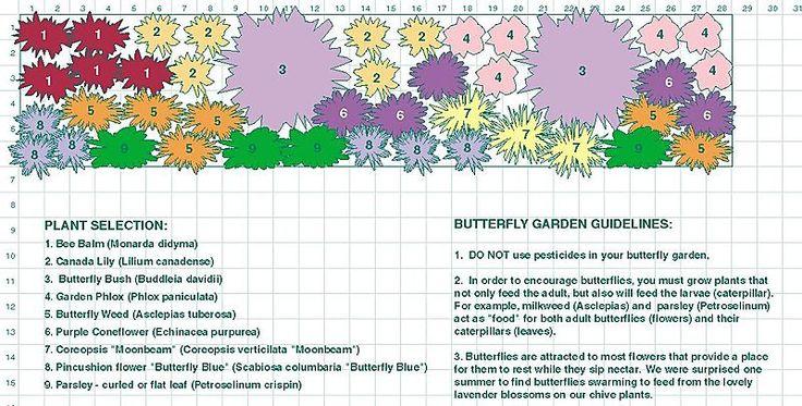 A butterfly garden design plan from Urban Debris (Photo ...