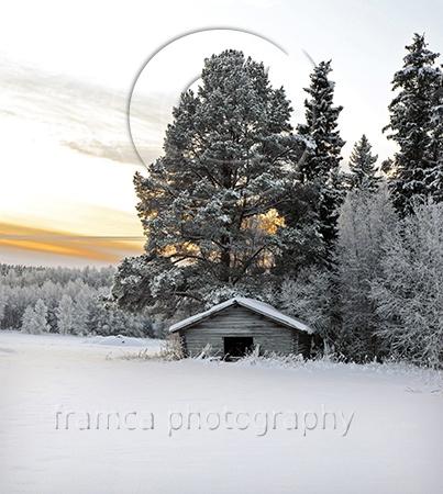 Harmony  framcaphotography.com