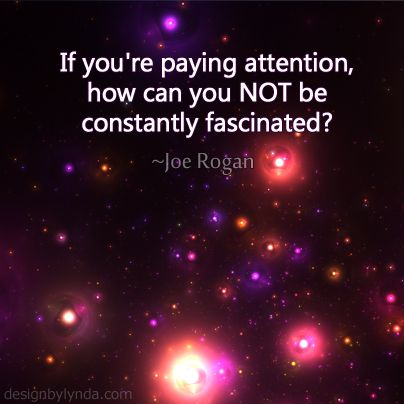 constantly fascinated... (Joe Rogan)