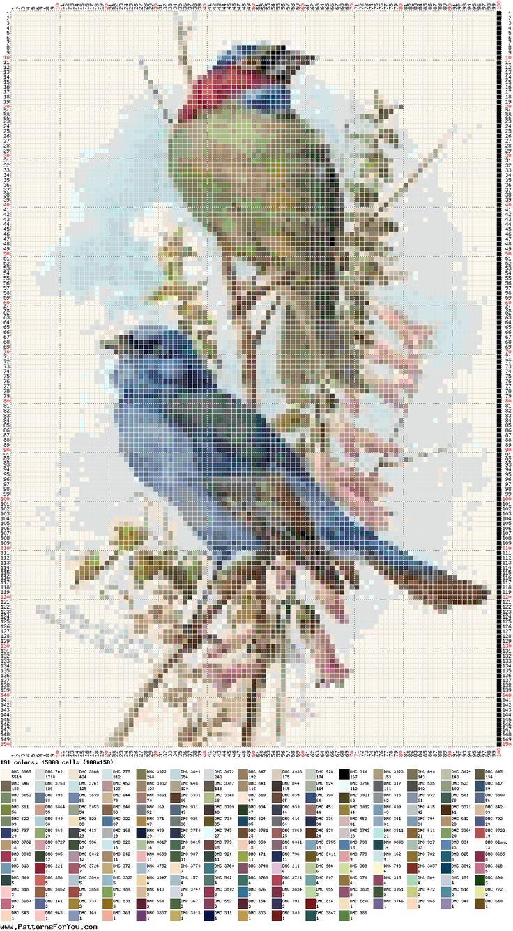 Birds (bbj2282) 1/1