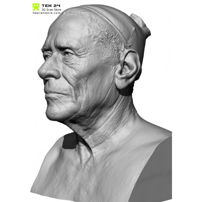 110 best 3D scans Heads images on Pinterest | Anatomy reference ...