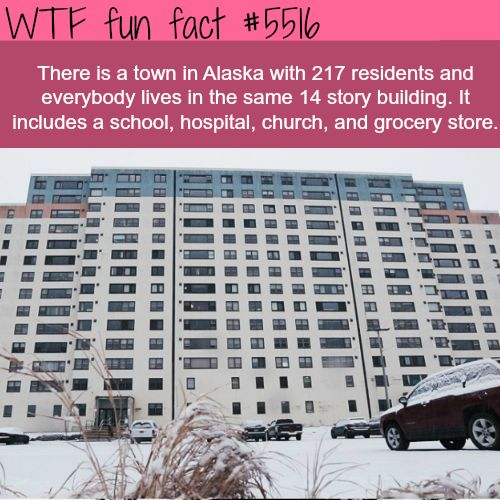 Northern Enclosure - WTF fun facts An Entire City in one building.