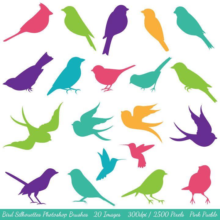 Silhouettes d'oiseaux                                                       …