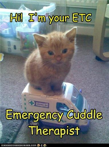 the sound of a purring cat  has curative properties, just cuddle it close to the area you need cured and let it purr away.