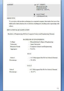excellent professional curriculum vitae resume cv format