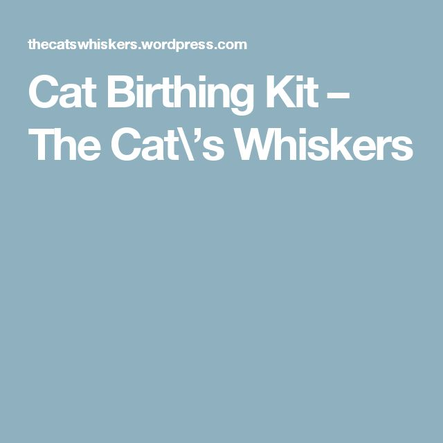 Cat Birthing Kit – The Cat\'s Whiskers