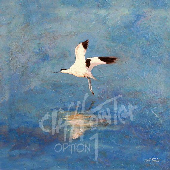 Avocet fine art print from original painting by Cliff Towler, Nursery Wall Art, Wildlife art print, bird painting prints, bird art, wildlife