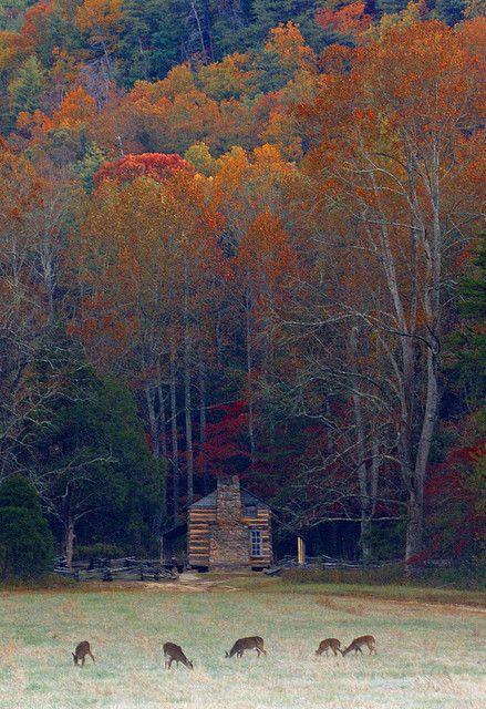 John Oliver Cabin by abennett23, via Flickr