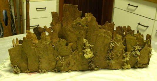 Plantaanschors - Een stuk piepschuim van een 40 cm. lang en een 10 tal cm. breed. Dit stuk bezetten met Plantaanschors, aan de kanten wat lager, in het midden hoger. De kleine gaatjes opvullen met mos. Een stuk oasis, beetje de vorm van de schors.Verder Hortensia, witte Skimias en malusappeltjes