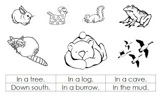 """Printable Pictures of Hibernating Animals   Amy also had a poem on her blog called """"Winter Animals"""". It has some ..."""