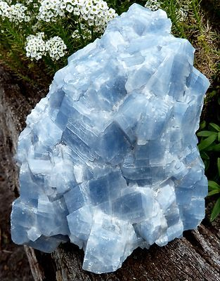 Blue Calcite: Assists in expressing emotions freely + cleanses stored negative energy & aids memory