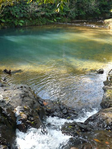 Discover the Charco Azul Natural Pool in Cayey, Puerto Rico: Charco Azul in Cayey, Puerto Rico