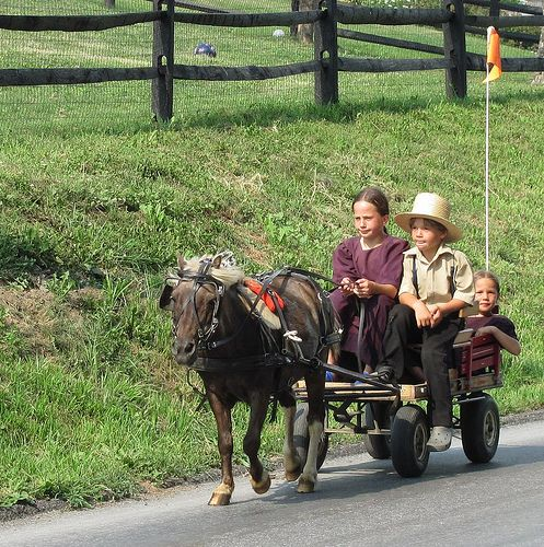 Amish children drive a miniature buggy pulled by a pony in Lancaster country of Pennsylvania.