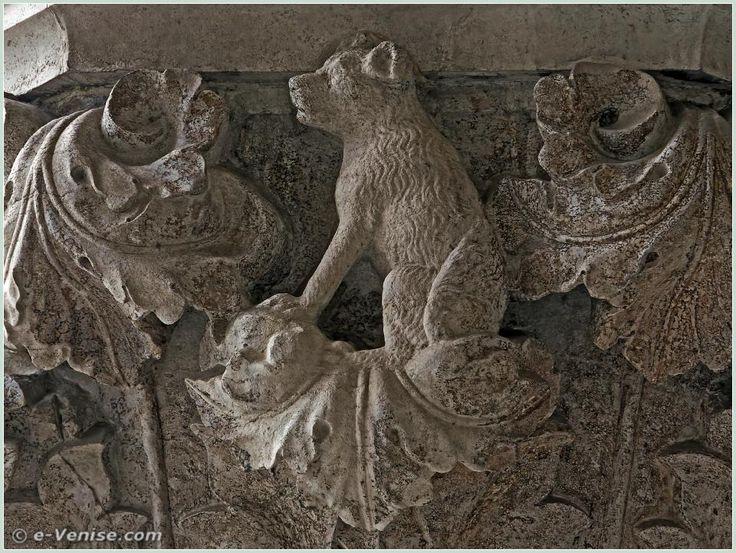 """14e chapiteau du Palais des Doges : à noter le pelage """"en bataille"""" qui accentue la notion de mépris des règles, la négligence"""